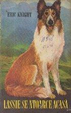 Lassie ntoarce acasa